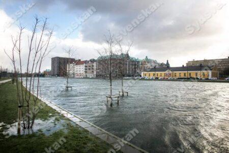 översvämning malmö augusti 2014